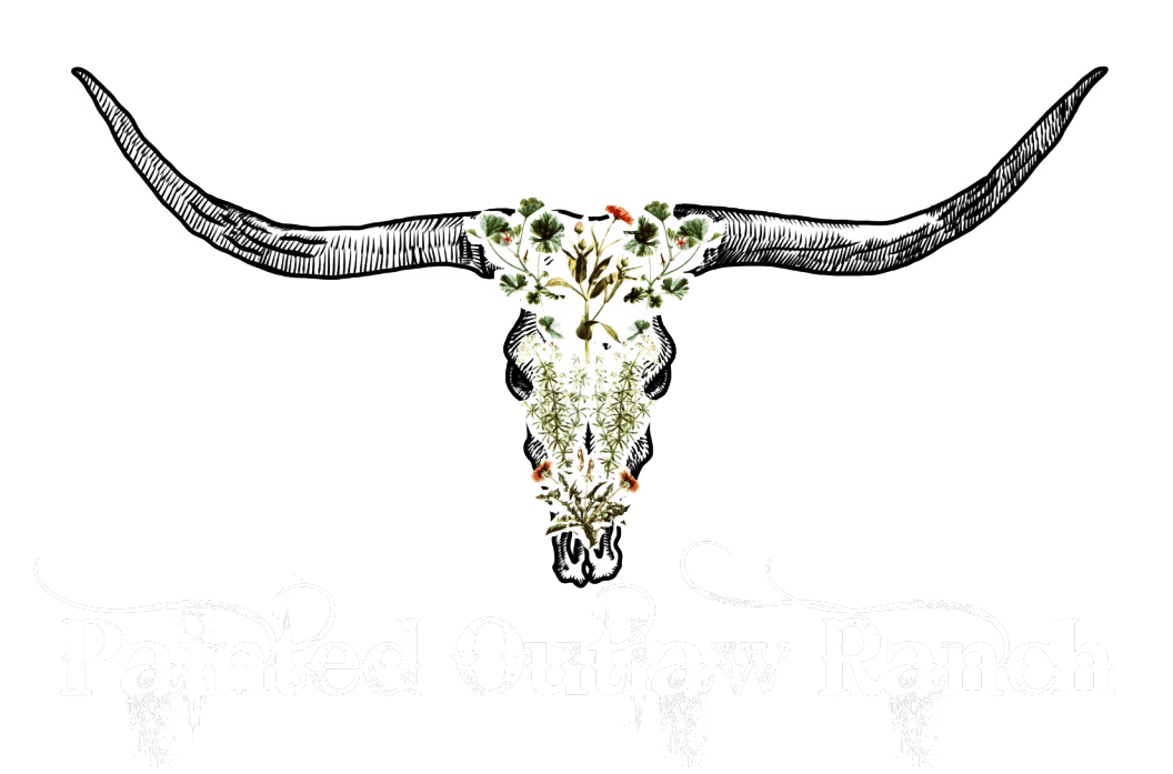 Painted Outlaw Ranch logo